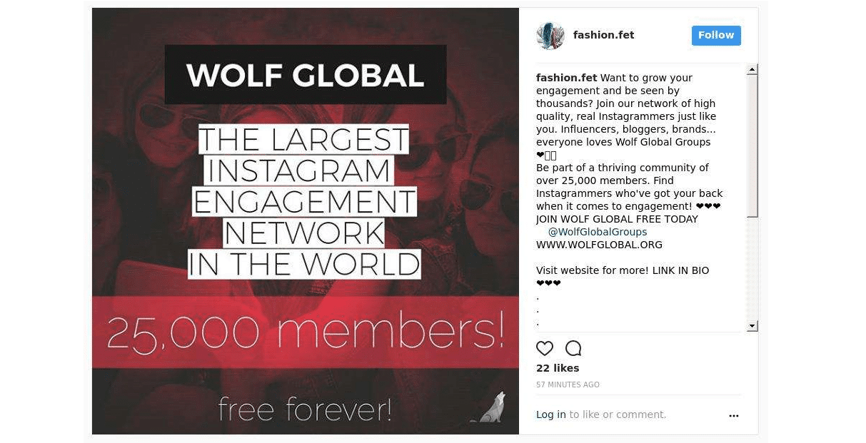 Fail Instagram Shoutout for Wolf Global Groups